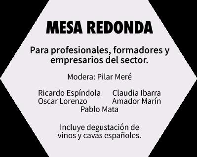 Mesa Redonda. Para profesionales, formadores y empresarios del sector